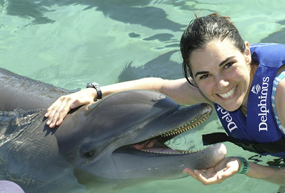 Delphinus Xel-Ha Dolphin Swimming